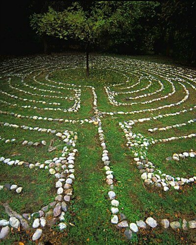 labyrinth with tree