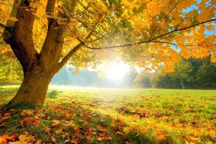 sun-ingress-aries-autumn-spring-equinox