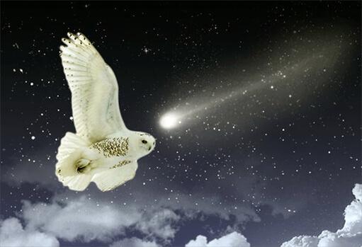 Virgo_New_Moon
