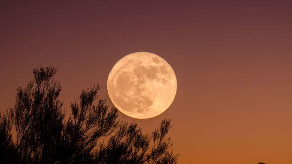 super-flower-scorpio-full-moon-2020-may